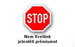 Jelenleti_premium_1